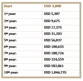 The Chart Your Investment with Compound Interest in A Year