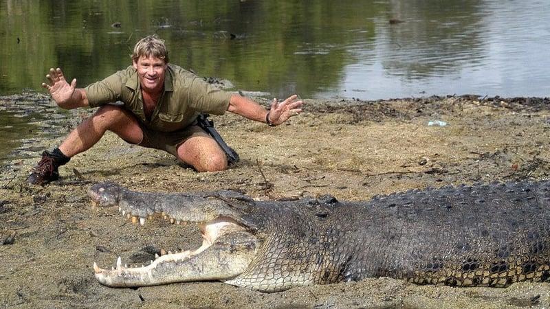 Steve Erwin, The Crocodile Hunter