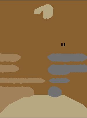 FM-Website-OpenAccount-Demo-MT4