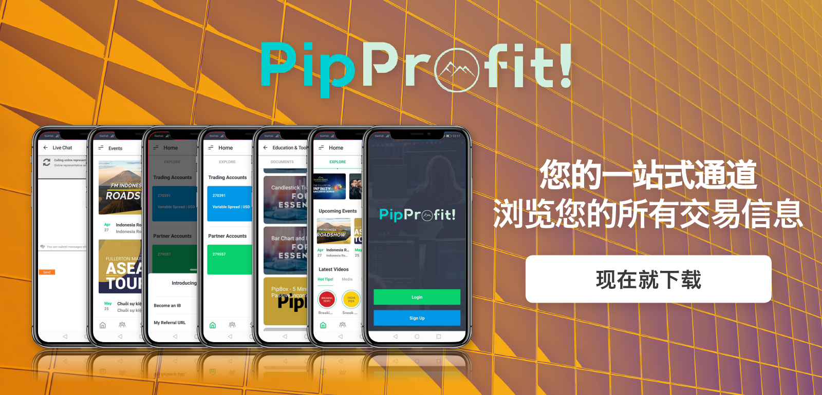 CN_PipProfit-Web-Sliders_1600x770px.jpg