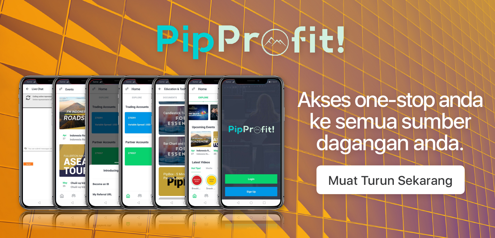 MS_PipProfit